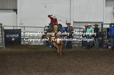 Ribbon Roping 4-24-2016