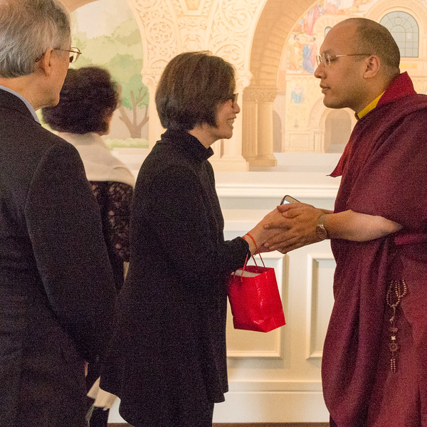 20150318-HCBSS-17th-Karmapa-8032.jpg
