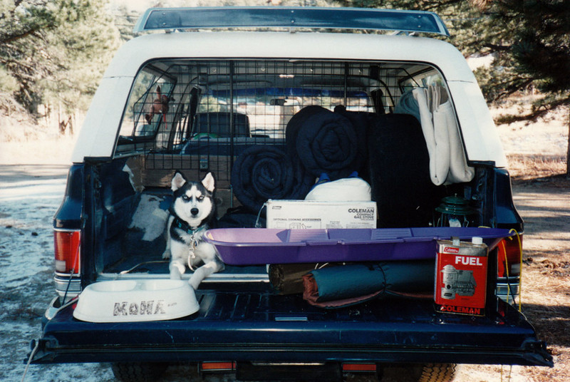Clea ready to go camping.jpg