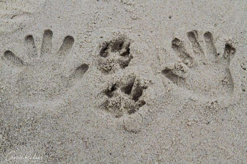 sandprint.jpg