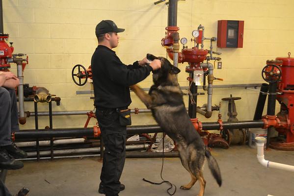 Bergen County, NJ Police K9 Training