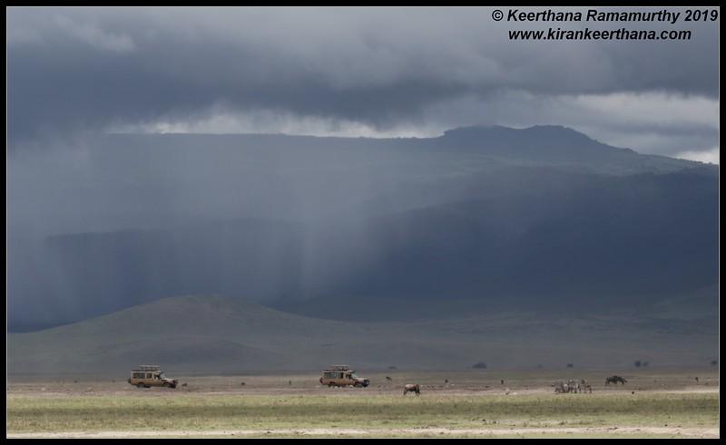 Ngorongoro Crater, Ngorongoro Conservation Area, Tanzania, November 2019