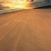 BeachFalseCapeStatePark-010