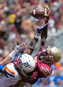 Florida State 31 - Boise State 36