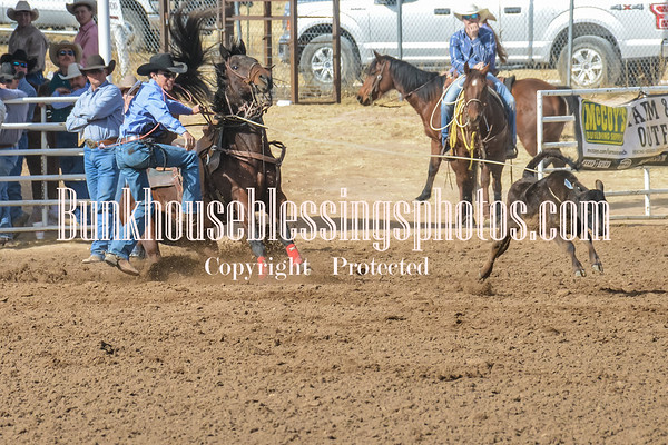 TS CALF ROPING