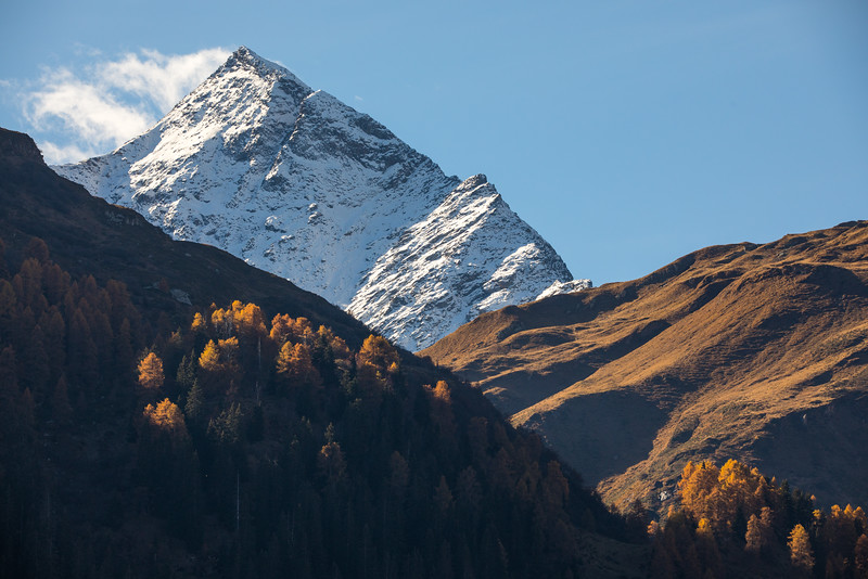 Herbst-im-Rheinwald--15.jpg