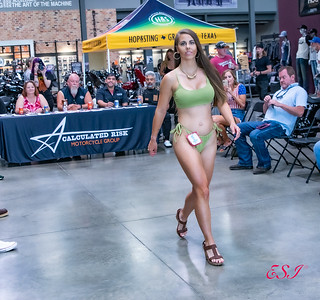 Texas Harley-Davidson/Bedford Contest