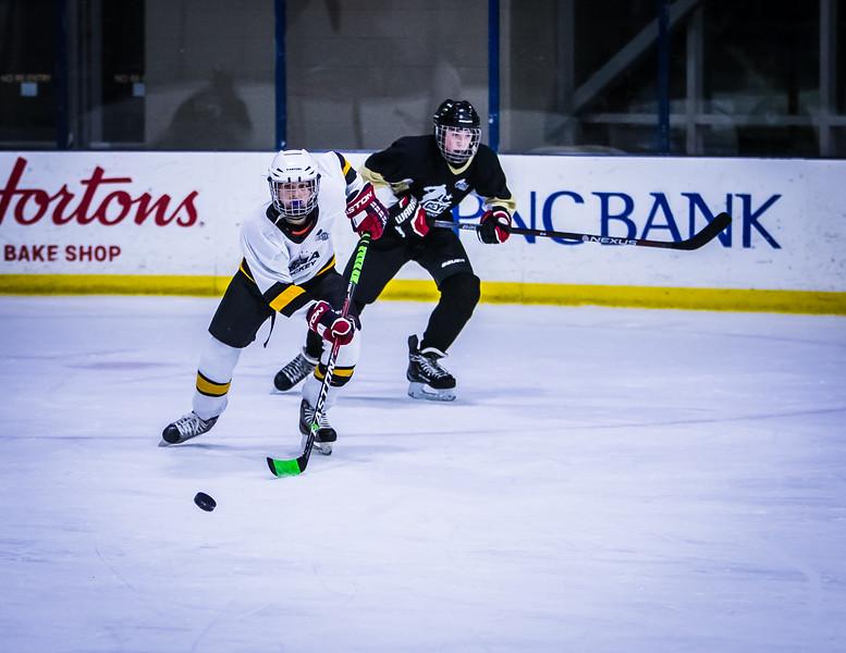 Bruins-218.jpg
