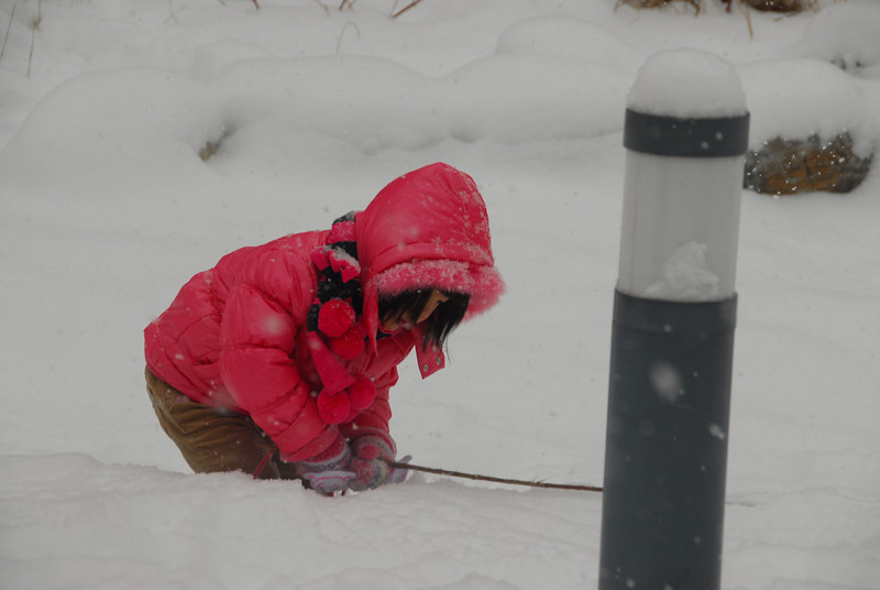 [20100103] 1st 2010 Snow in Beijing (63).JPG