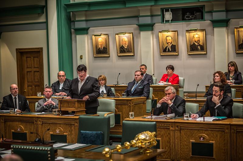 2016 NL Budget-20160414-0257-Edit-2.jpg