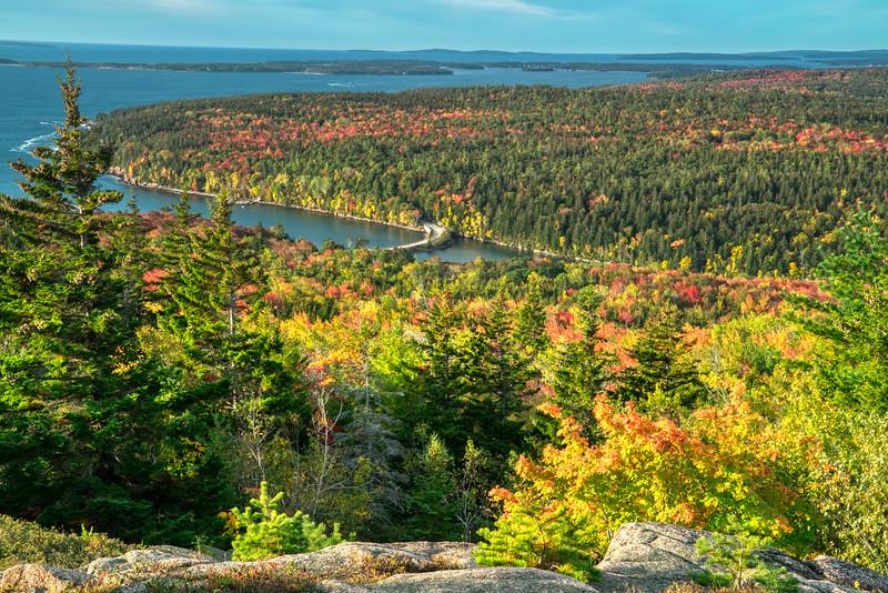 Acadia NP Fall 2019-36.jpg