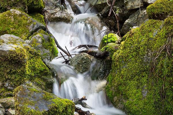 Falls Loop Hike, April 28, 2018