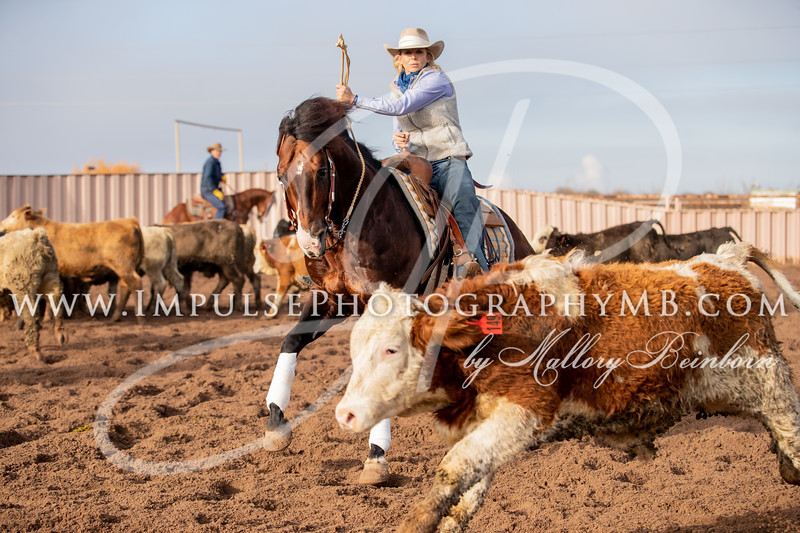 Official Photography - Art of the Cowgirl 2020
