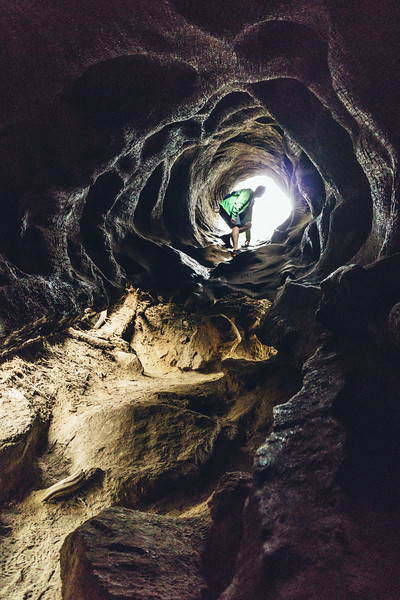 Rui in Sequoia-06934.jpg