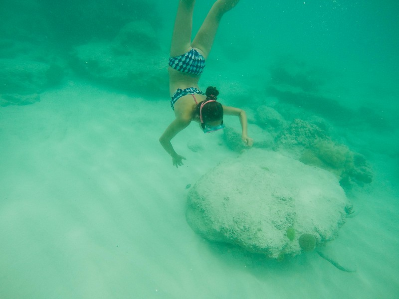 Bermuda-26.jpg