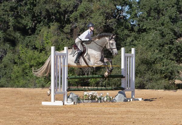 Rider 103- 3' Hunters