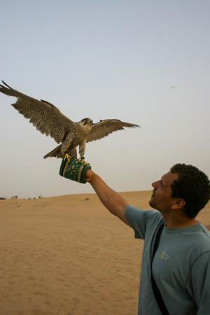 United Arab Emirates 2013