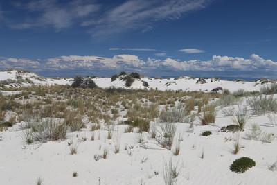 White Sands Sept 2015