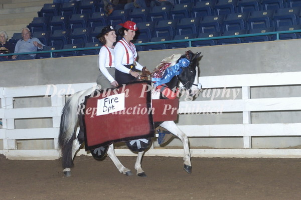 CLASS 52  COSTUME FLAT SHOD SPECIALTY