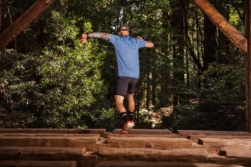 DT_redwoods_Jussioksanen_edited-2348.jpg