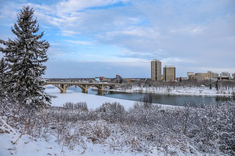 Saskatoon Winter