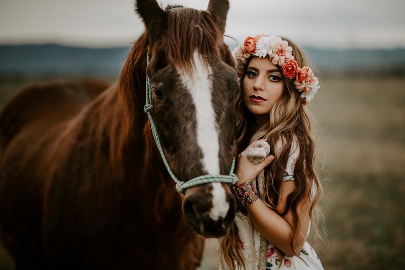 horsey-213.jpg