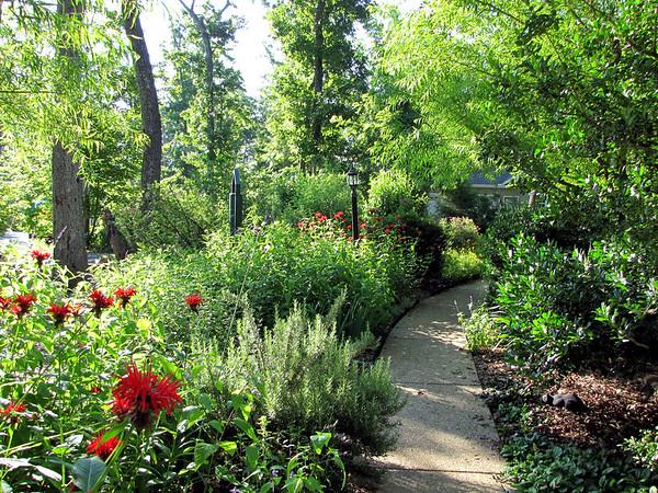 2009 Garden at Bluebird Cove
