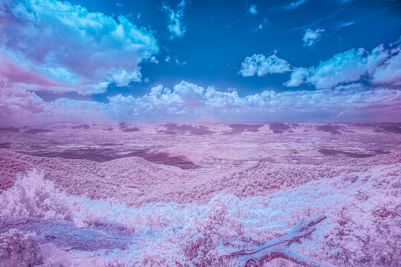 cotton candy valley
