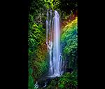 Wailua Falls Maui 20x36 RAINBOW.jpg