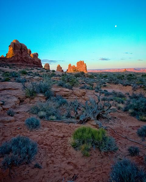 Arizona-Utah-1887-Edit-Edit.jpg