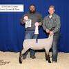 Reserve Lamb C Beagle