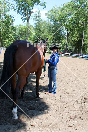 Ultimate 4-H Showman