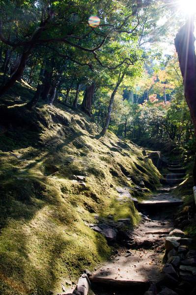 Japan_2010_NAT0447.jpg