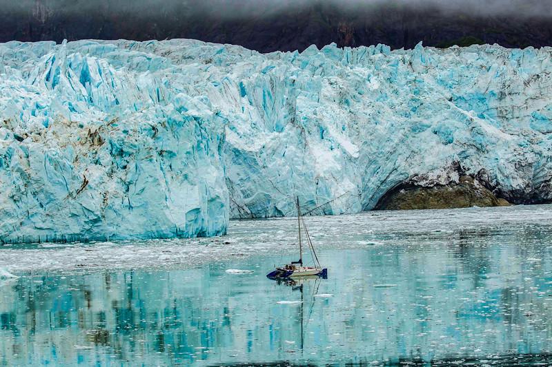 Glacier Bay 12.jpg
