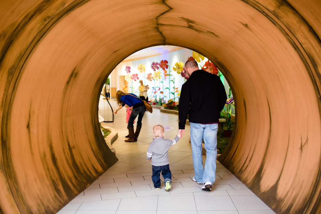 """. Cleveland Botanical Garden�s annual celebration of spring opens March 18 and runs through April 23. For more information, visit <a href=\""""http://www.cbgarden.org/\"""">cbgarden.org</a>. (Submitted)"""
