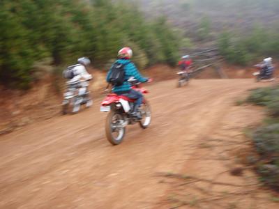 CR Brindies Ride 101003