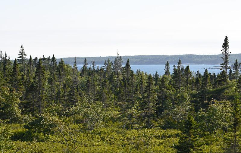 Nova Scotia July 2017_61.jpg