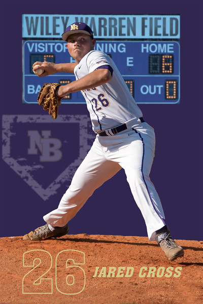 Baseball Senior Posters_Page_2.jpg