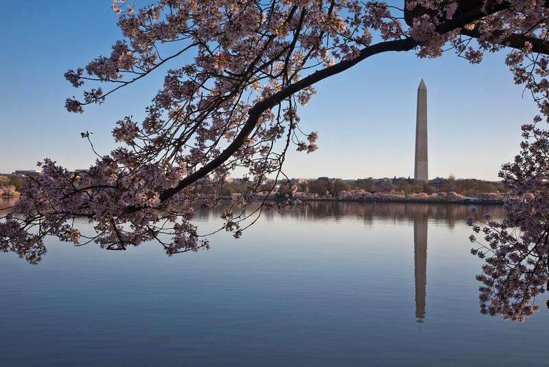 2009-04-05-Washington-DC-0742.jpg