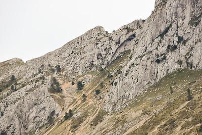 Bernia Circuit