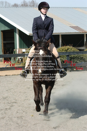 2010 Jumper / Hunter Shows