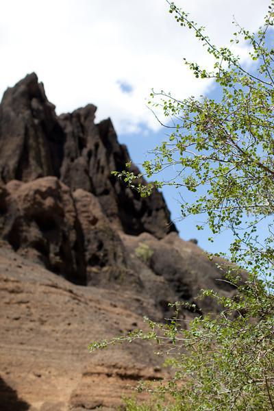 Arizona2014-134.jpg