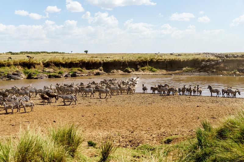Kenya 2015-02466.jpg