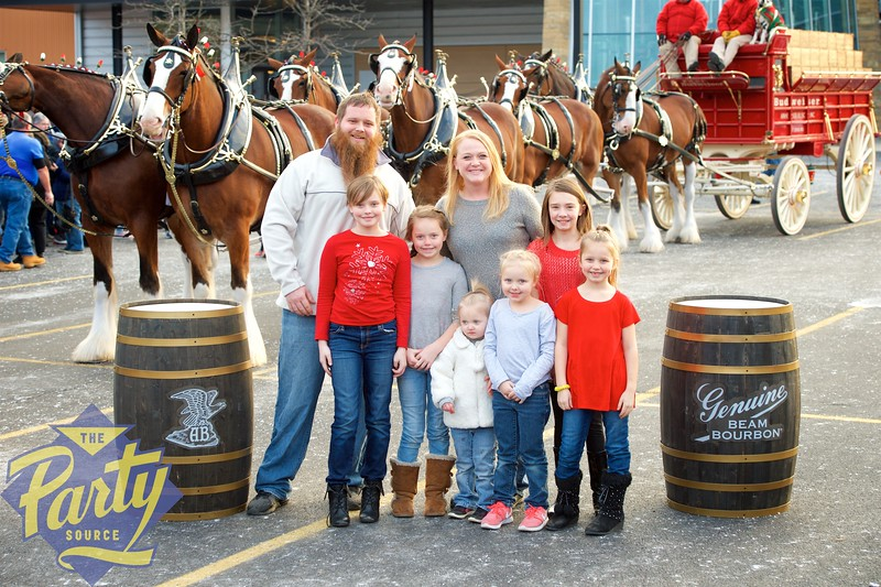 Clydesdale Portraits 152.jpg