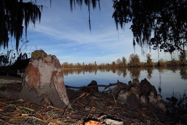 Alligator Lake  by ramp