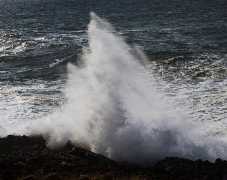 Coast_7d_085.jpg