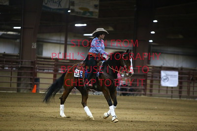 Sun 70. Novice Youth Ranch Reining
