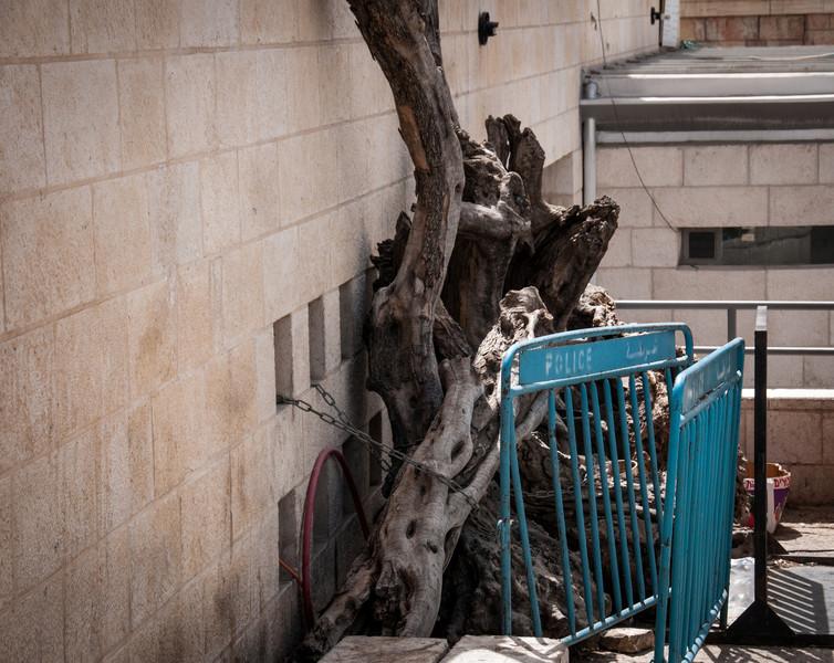 Israel_0922.jpg