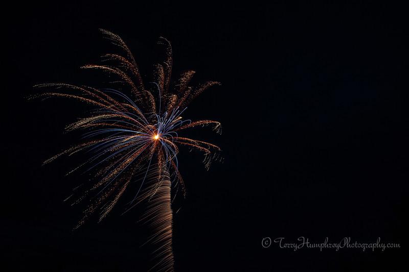 2019 Paradise Fireworks-29.jpg