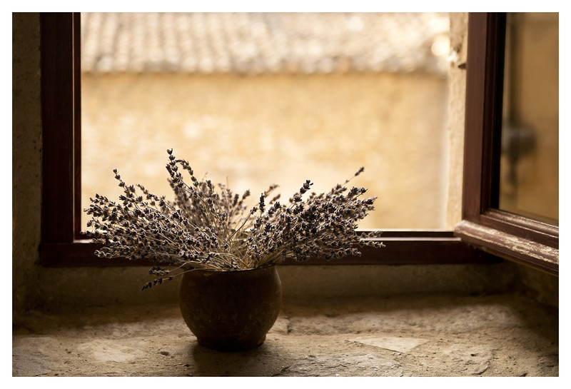 Dried lavender in our bedroom window.